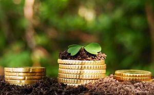 продление действия льготного земельного налогообложения
